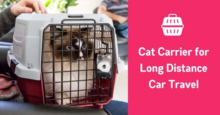 best cat carrier for long distance car travel